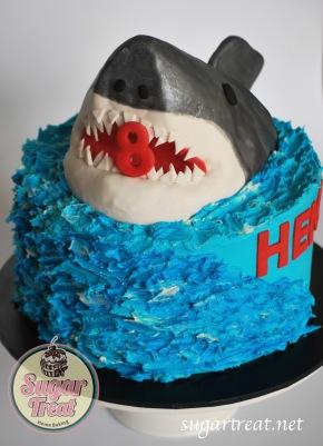 Big Shark cake and ocean