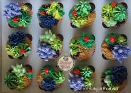 Succulent cupcakes1
